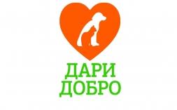 В ВятГУ пройдет акция «Дари добро» в поддержку бездомных животных